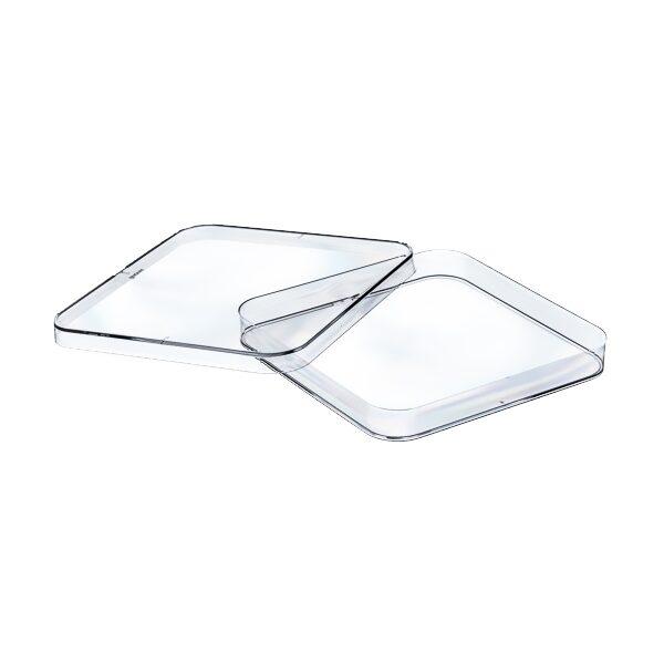 Kwadratowe szalki Petriego - 1