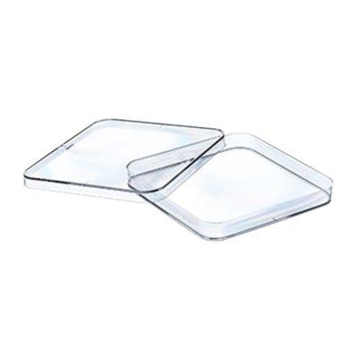 Kwadratowe szalki Petriego